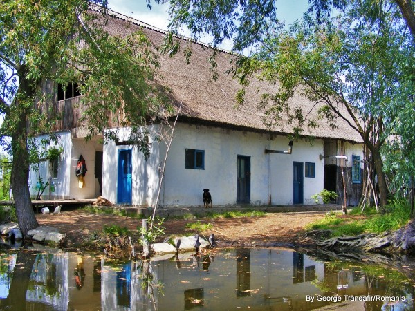 private-guided-tour-in-danube-delta-007
