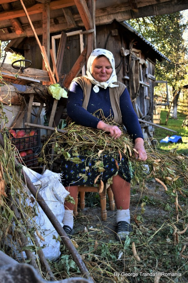 private-guided-tour-in-maramures-romania-013