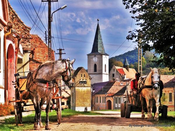 private-guided-tour-in-transylvania-romania-012